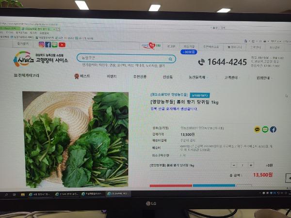 2-4. 사진(온라인마케팅으로 영양산나물 판매 열기 화끈).jpg