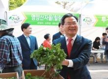 [영양]제16회 영양산나물축제 온·오프라인 행사 추진